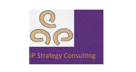 IP Strategy Consulting